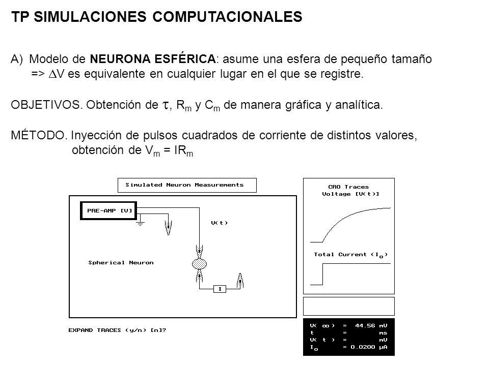 TP SIMULACIONES COMPUTACIONALES