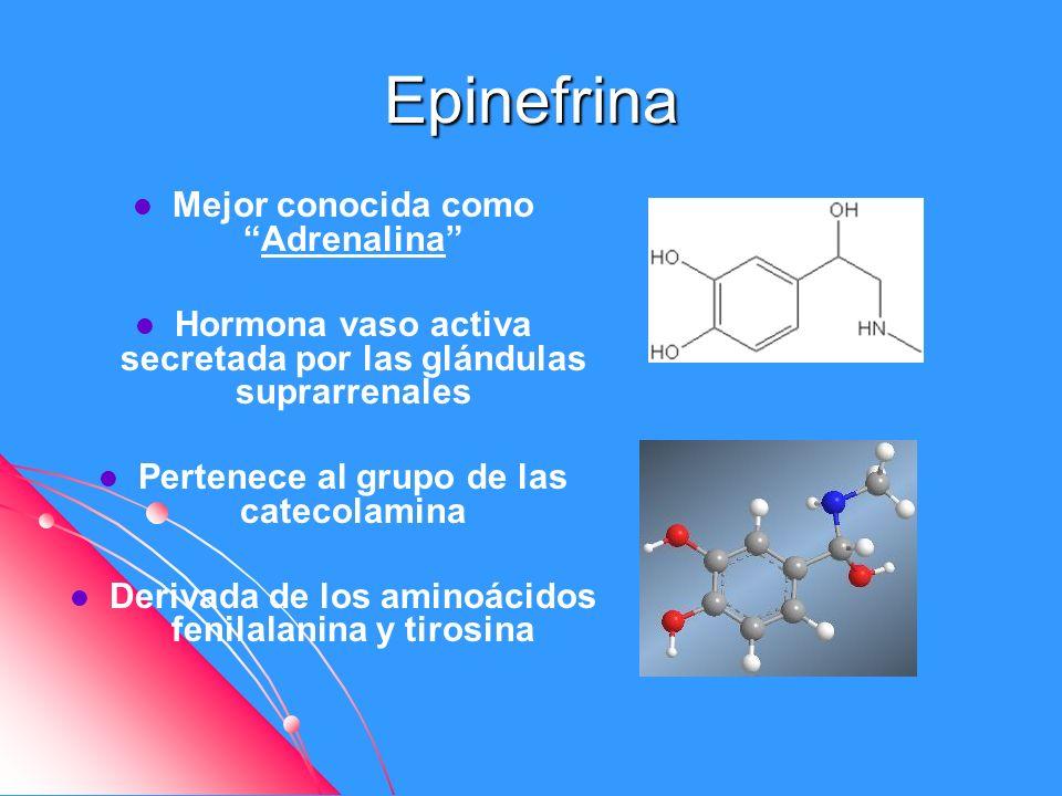 Epinefrina Mejor conocida como Adrenalina