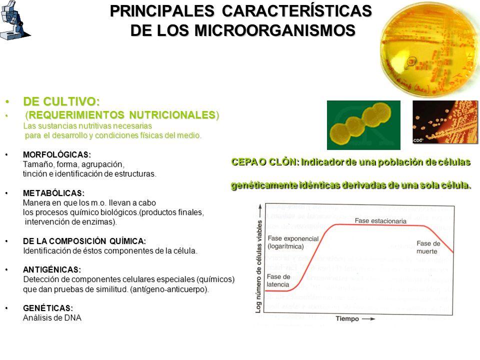 PRINCIPALES CARACTERÍSTICAS DE LOS MICROORGANISMOS