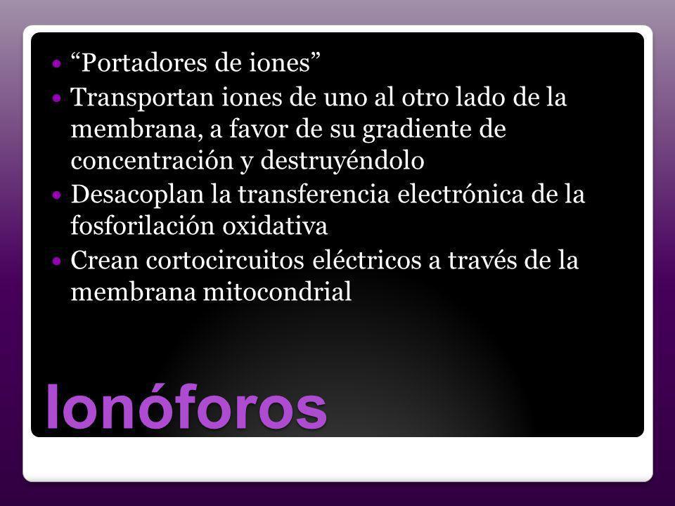 Ionóforos Portadores de iones
