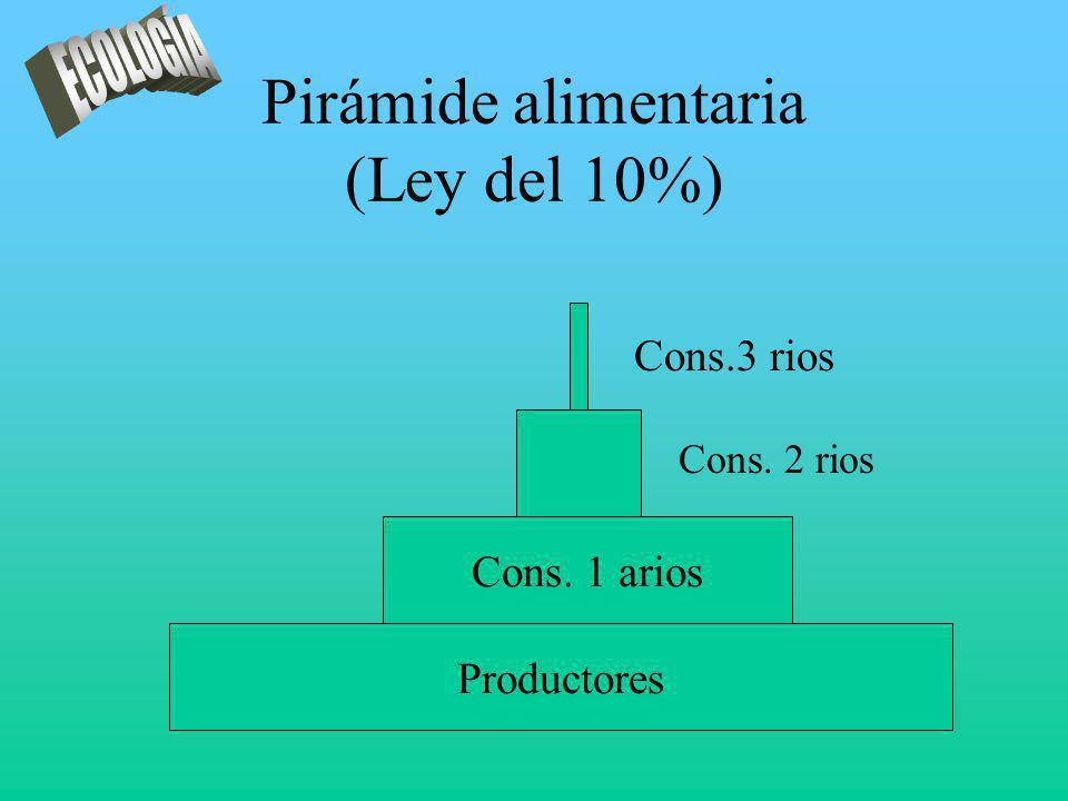 Pirámide alimentaria (Ley del 10%)