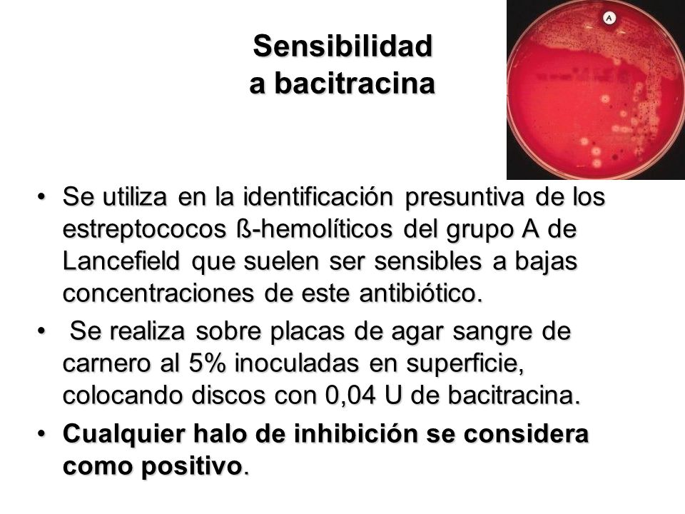 Sensibilidad a bacitracina