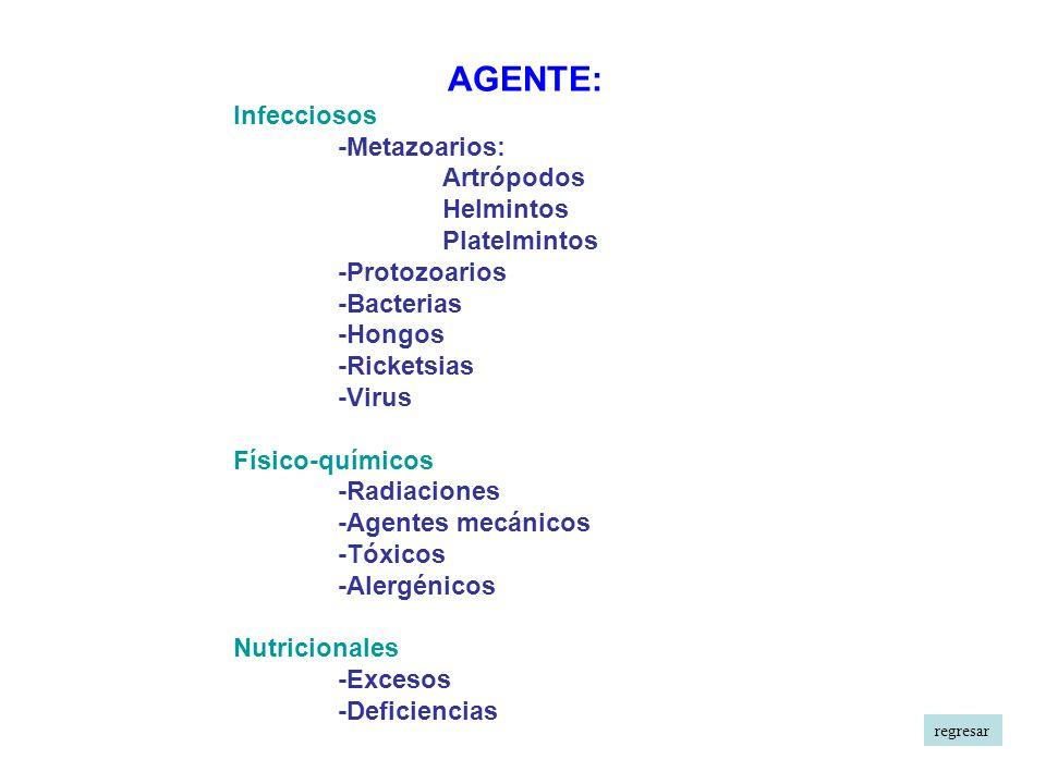 AGENTE: Infecciosos -Metazoarios: Artrópodos Helmintos Platelmintos