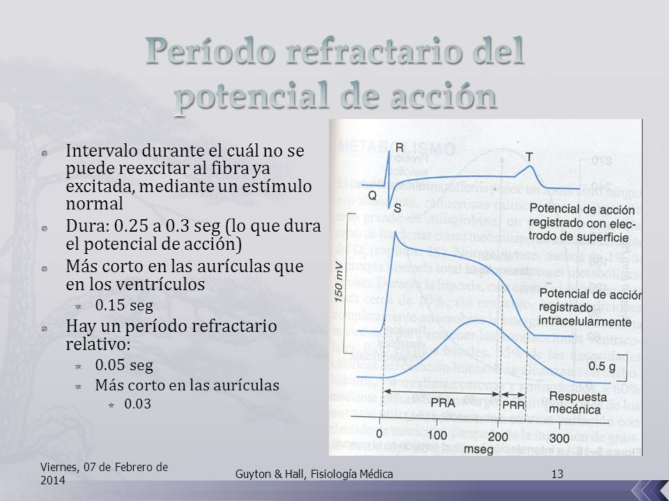 Período refractario del potencial de acción