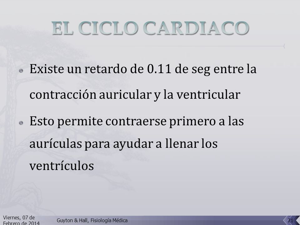 EL CICLO CARDIACO Existe un retardo de 0.11 de seg entre la contracción auricular y la ventricular.
