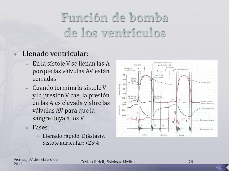 Función de bomba de los ventrículos