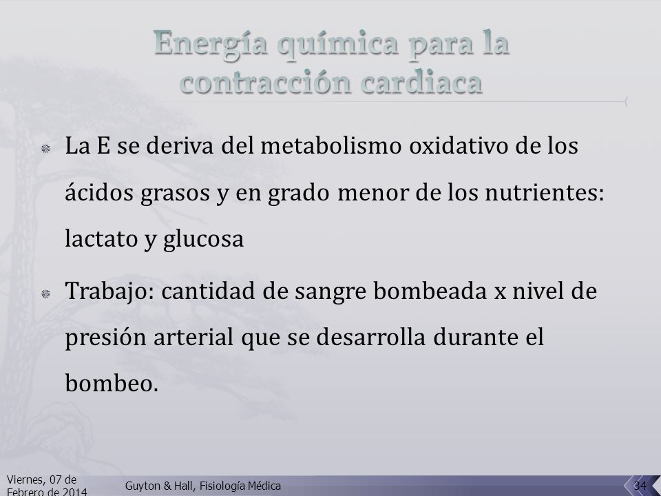 Energía química para la contracción cardiaca