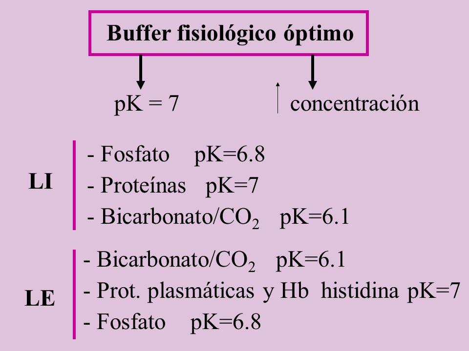Buffer fisiológico óptimo