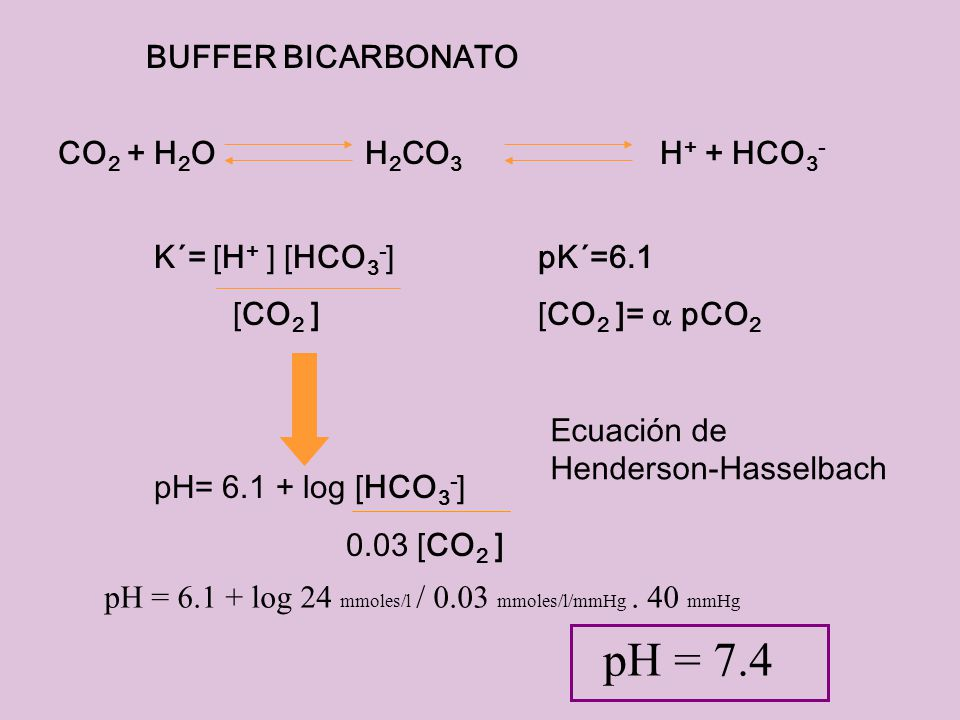 pH = 7.4 BUFFER BICARBONATO CO2 + H2O H2CO3 H+ + HCO3-