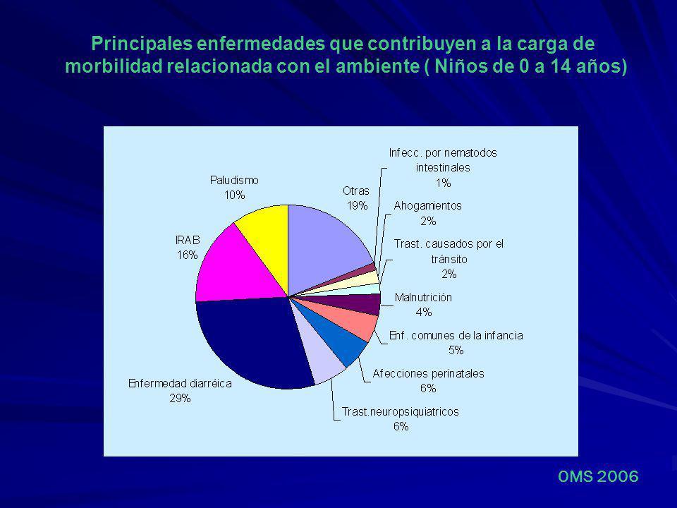 Principales enfermedades que contribuyen a la carga de