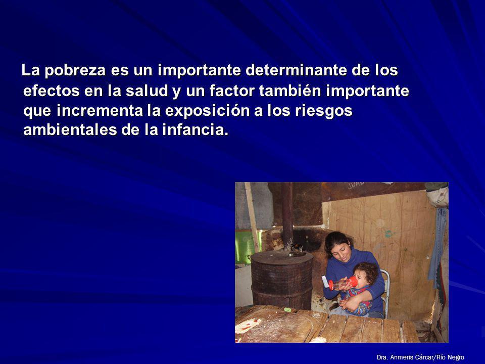 La pobreza es un importante determinante de los efectos en la salud y un factor también importante que incrementa la exposición a los riesgos ambientales de la infancia.