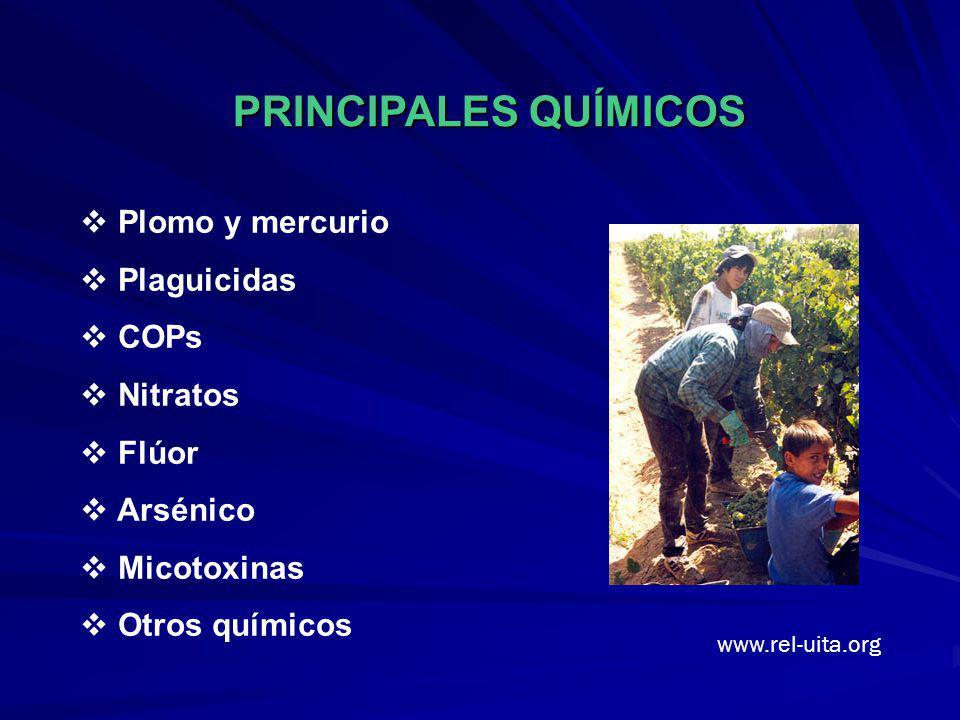 PRINCIPALES QUÍMICOS Plomo y mercurio Plaguicidas COPs Nitratos Flúor