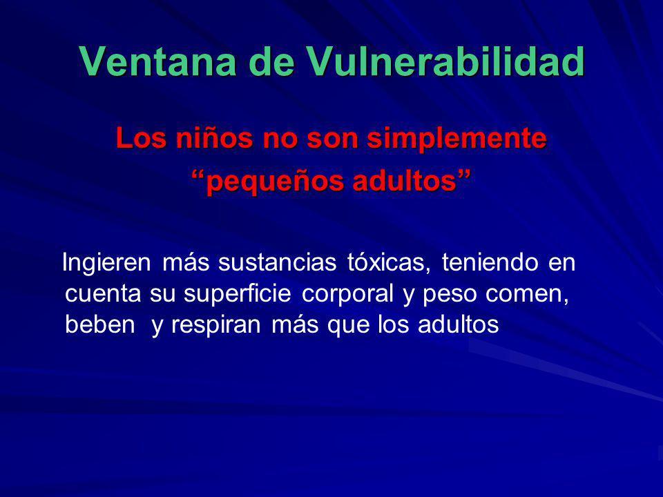 Ventana de Vulnerabilidad