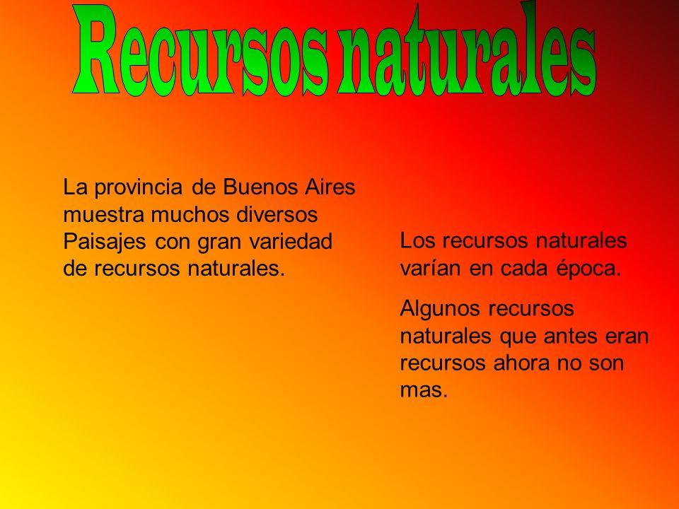 Recursos naturales La provincia de Buenos Aires muestra muchos diversos Paisajes con gran variedad de recursos naturales.