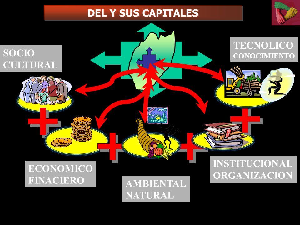 DEL Y SUS CAPITALES TECNOLICO SOCIO CULTURAL INSTITUCIONAL ECONOMICO