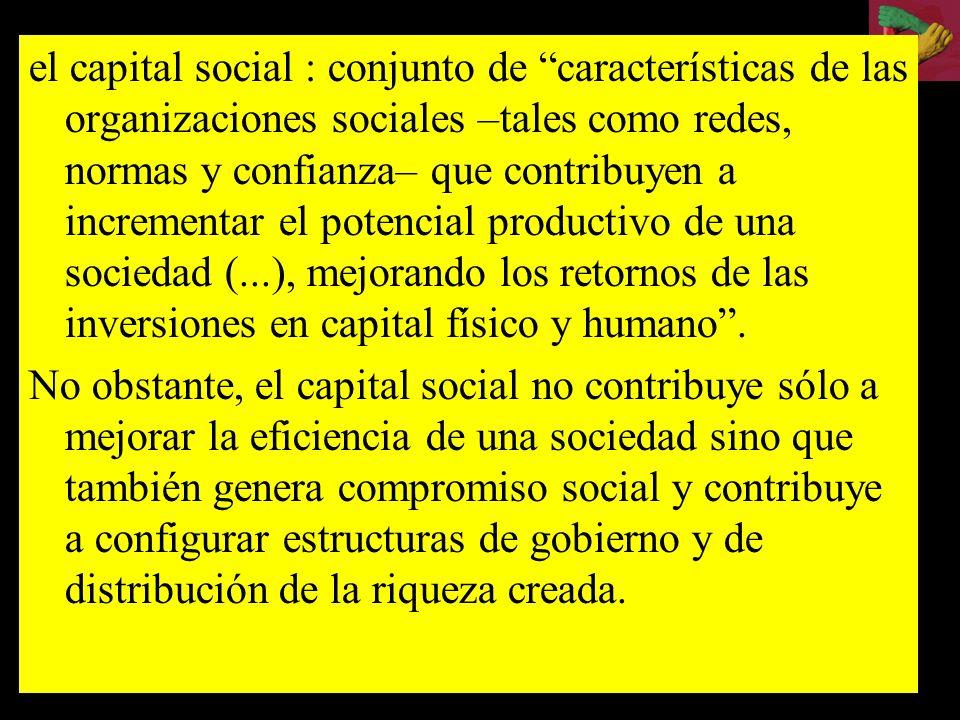 el capital social : conjunto de características de las organizaciones sociales –tales como redes, normas y confianza– que contribuyen a incrementar el potencial productivo de una sociedad (...), mejorando los retornos de las inversiones en capital físico y humano .