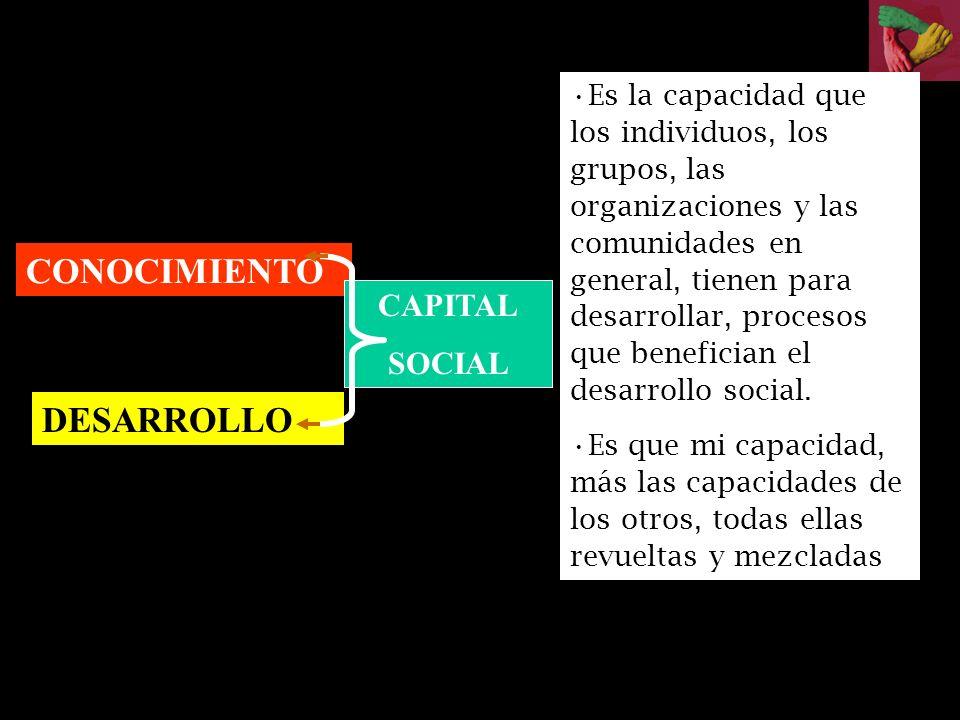 CONOCIMIENTO DESARROLLO CAPITAL SOCIAL