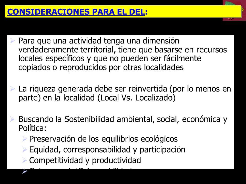 CONSIDERACIONES PARA EL DEL: