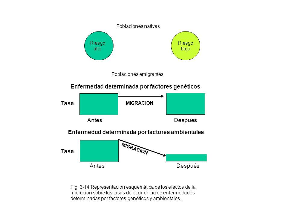 Enfermedad determinada por factores genéticos