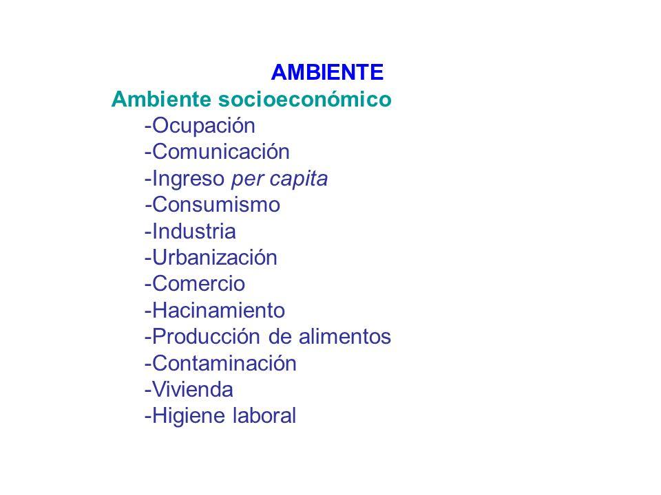 AMBIENTE Ambiente socioeconómico. -Ocupación. -Comunicación. -Ingreso per capita. -Consumismo. -Industria.