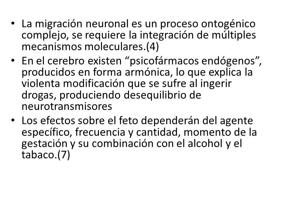 La migración neuronal es un proceso ontogénico complejo, se requiere la integración de múltiples mecanismos moleculares.(4)