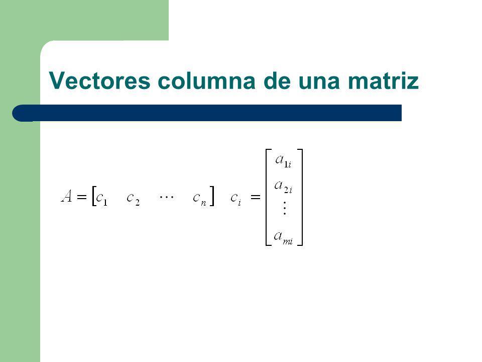 Vectores columna de una matriz