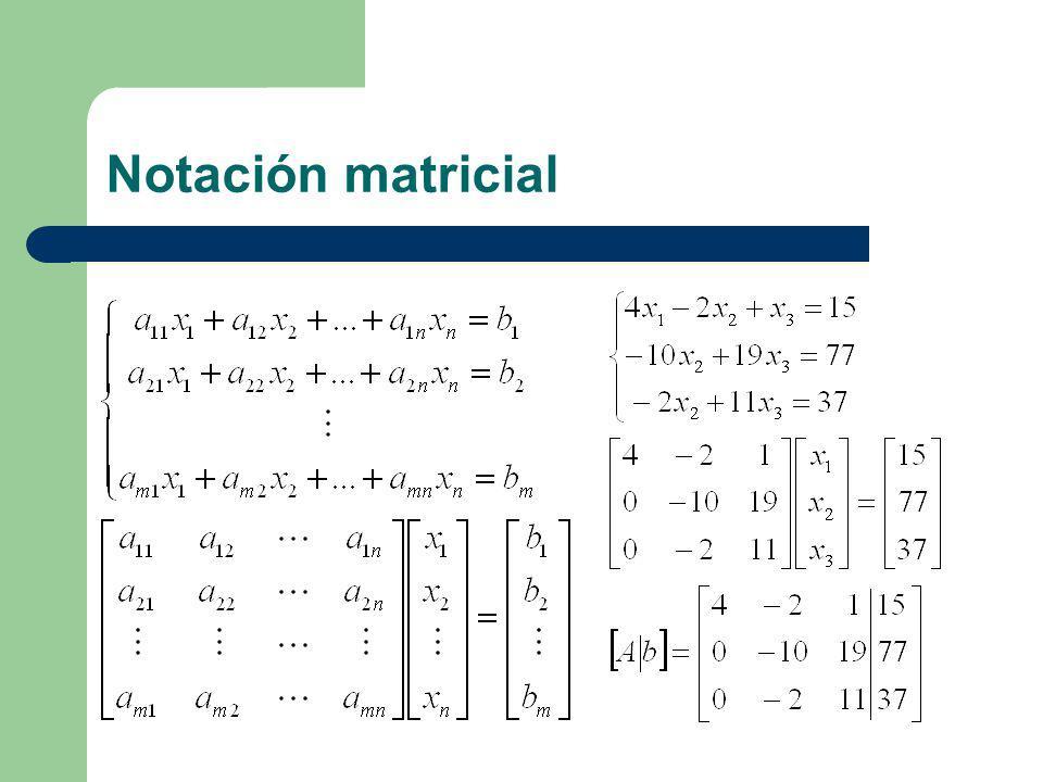 Notación matricial