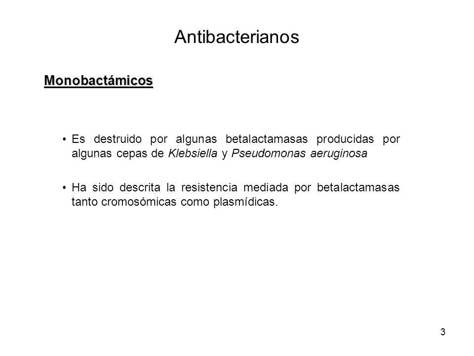Antibacterianos Monobactámicos
