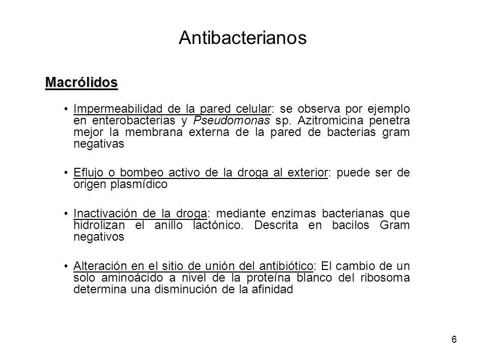 Antibacterianos Macrólidos