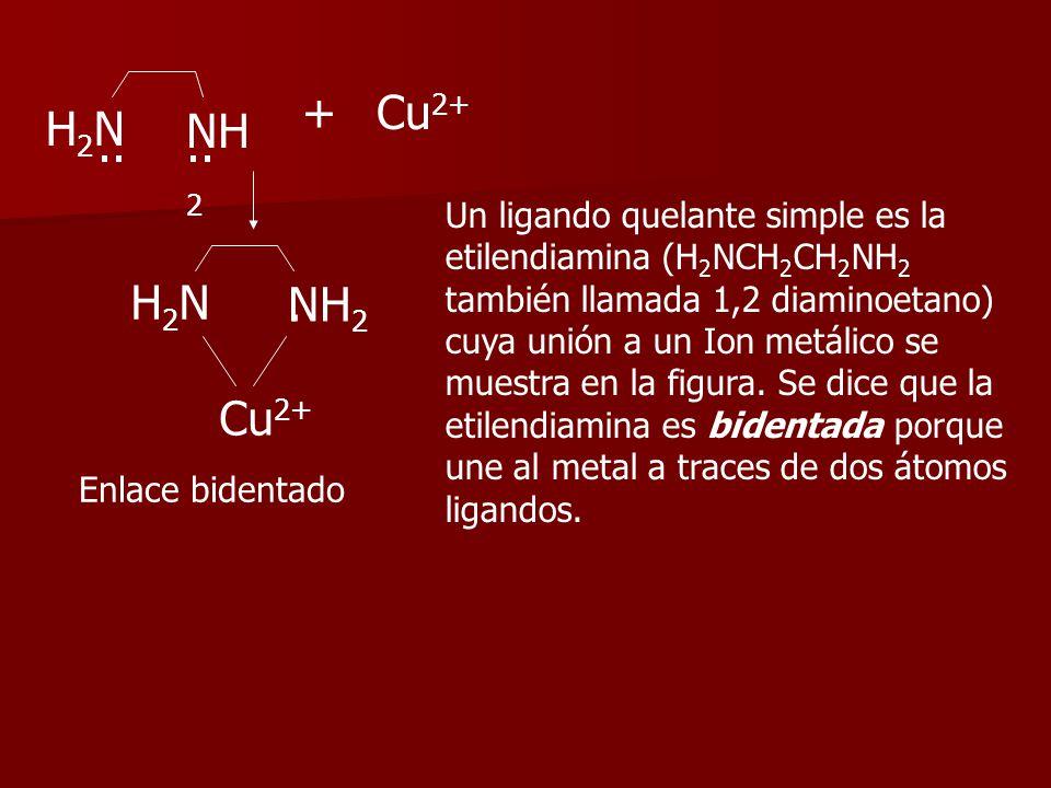 + Cu2+ H2N NH2 .. .. H2N . NH2 Cu2+ Un ligando quelante simple es la
