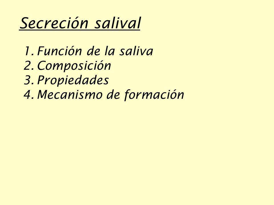 Secreción salival Función de la saliva Composición Propiedades