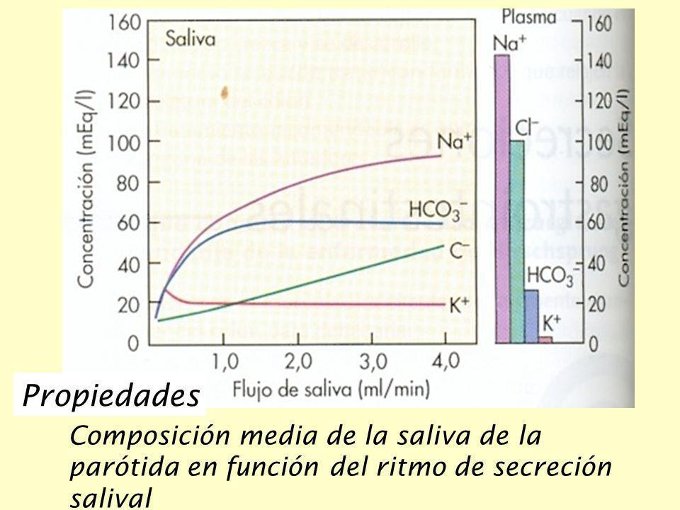 Propiedades Composición media de la saliva de la parótida en función del ritmo de secreción salival