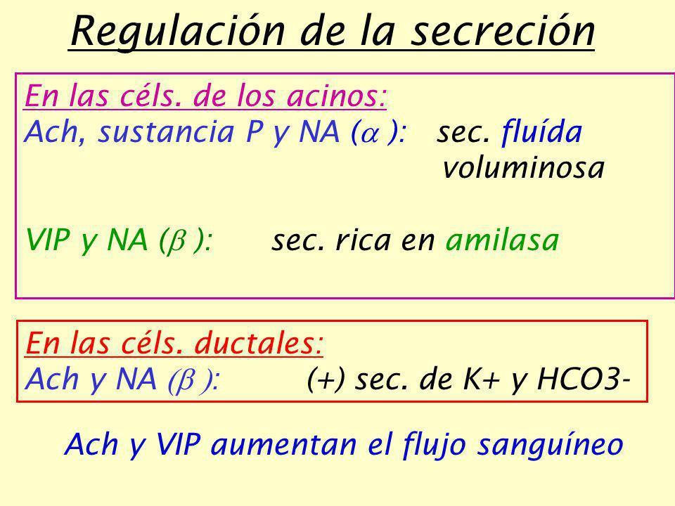 Regulación de la secreción
