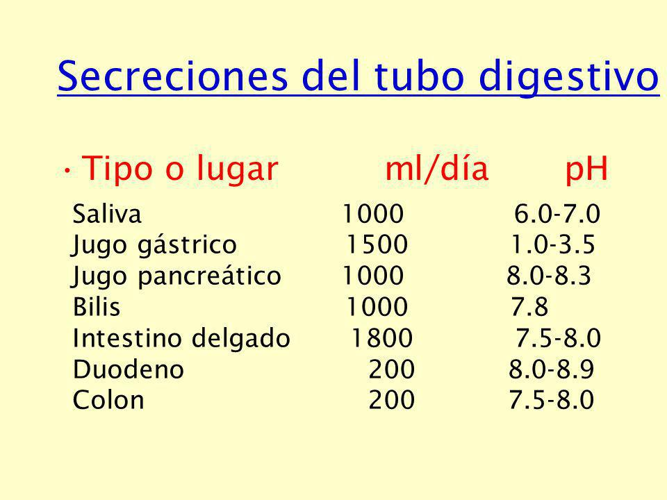 Secreciones del tubo digestivo