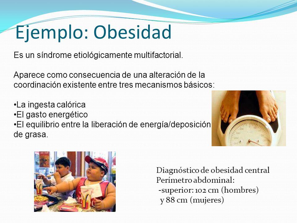 Ejemplo: Obesidad Es un síndrome etiológicamente multifactorial.