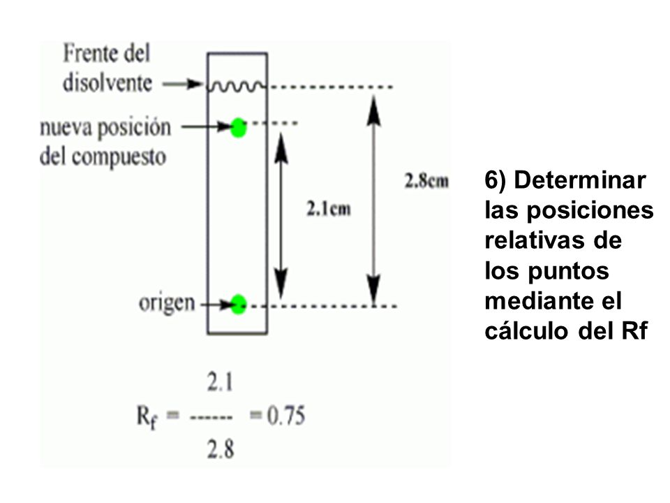 6) Determinar las posiciones relativas de los puntos mediante el cálculo del Rf