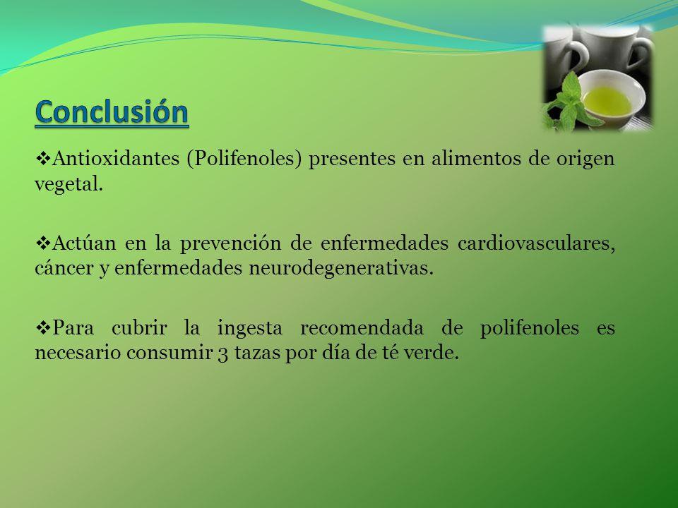 Conclusión Antioxidantes (Polifenoles) presentes en alimentos de origen vegetal.