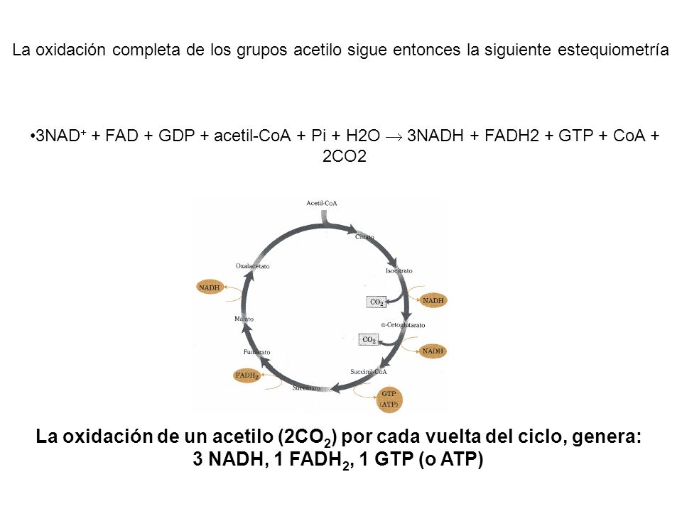 La oxidación completa de los grupos acetilo sigue entonces la siguiente estequiometría