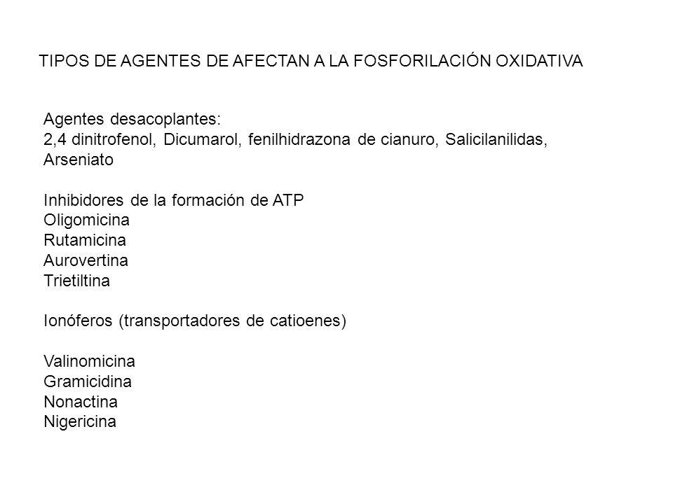 TIPOS DE AGENTES DE AFECTAN A LA FOSFORILACIÓN OXIDATIVA