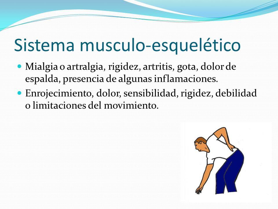 Sistema musculo-esquelético