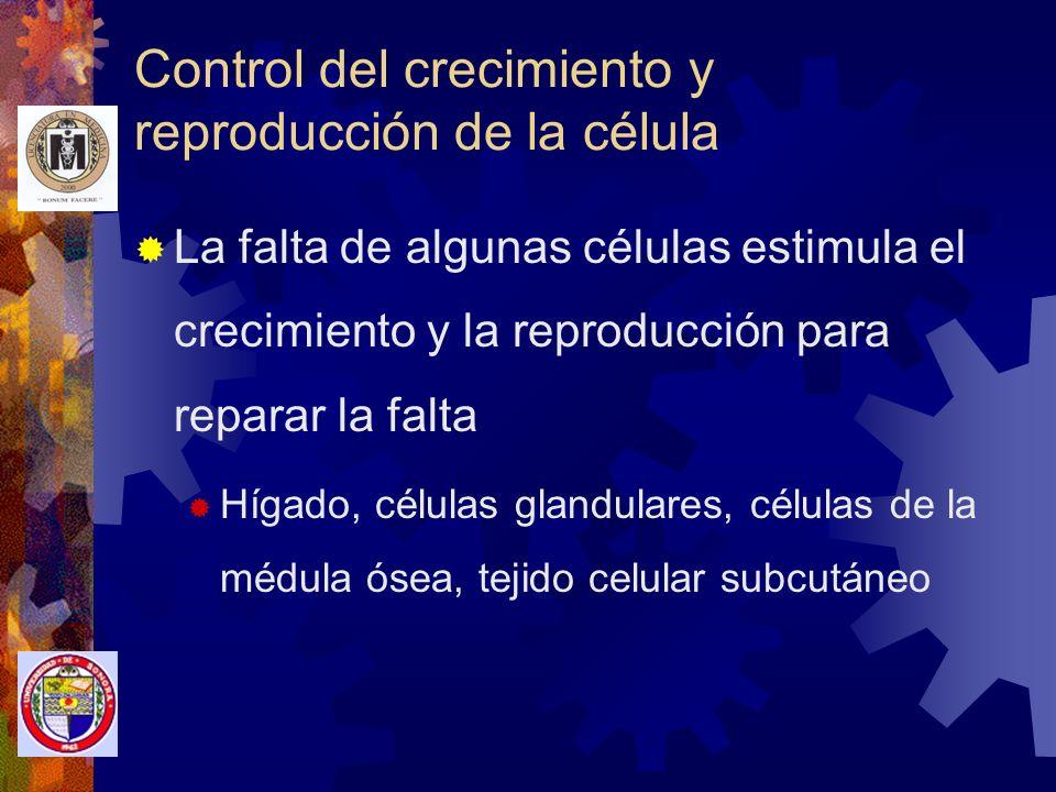 Control del crecimiento y reproducción de la célula