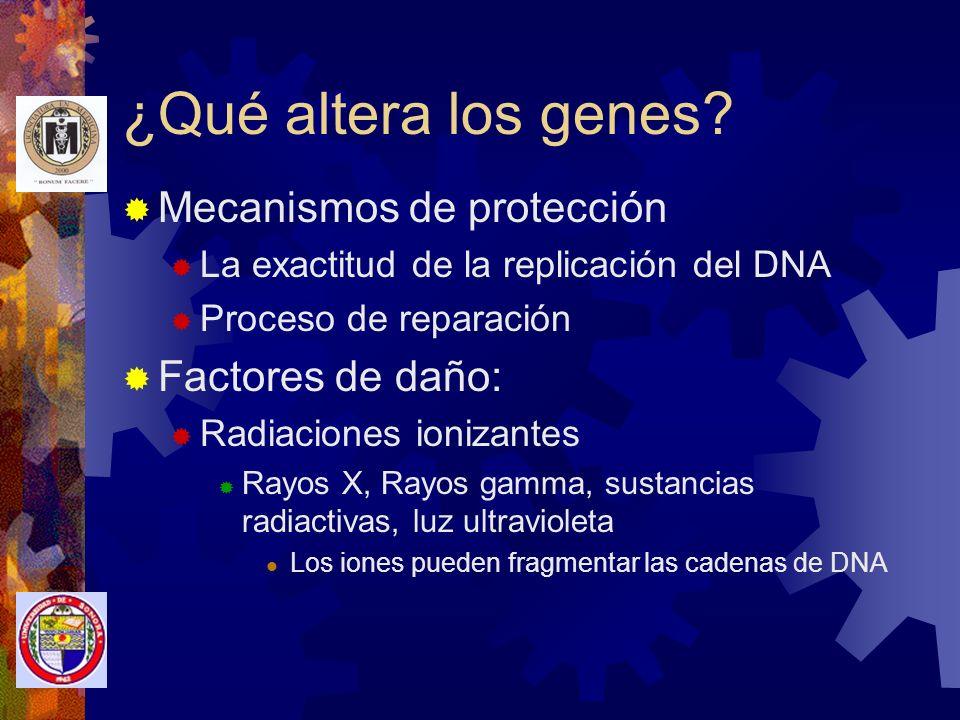 ¿Qué altera los genes Mecanismos de protección Factores de daño: