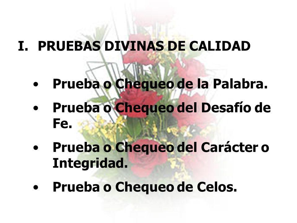 PRUEBAS DIVINAS DE CALIDAD
