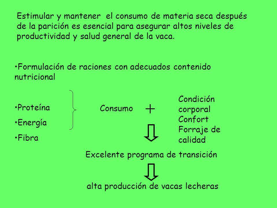 Formulación de raciones con adecuados contenido nutricional