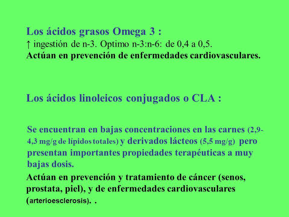 Los ácidos grasos Omega 3 :