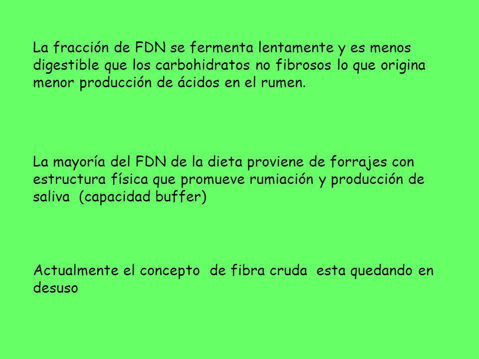 La fracción de FDN se fermenta lentamente y es menos digestible que los carbohidratos no fibrosos lo que origina menor producción de ácidos en el rumen.