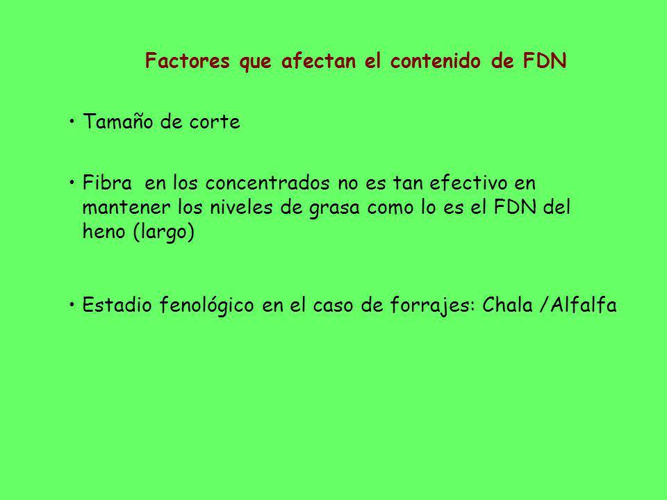 Factores que afectan el contenido de FDN