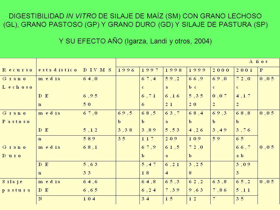 DIGESTIBILIDAD IN VITRO DE SILAJE DE MAÍZ (SM) CON GRANO LECHOSO (GL), GRANO PASTOSO (GP) Y GRANO DURO (GD) Y SILAJE DE PASTURA (SP) Y SU EFECTO AÑO (Igarza, Landi y otros, 2004)