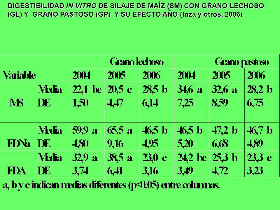 DIGESTIBILIDAD IN VITRO DE SILAJE DE MAÍZ (SM) CON GRANO LECHOSO (GL) Y GRANO PASTOSO (GP) Y SU EFECTO AÑO (Inza y otros, 2006)