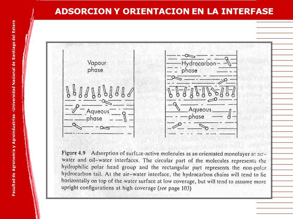 ADSORCION Y ORIENTACION EN LA INTERFASE
